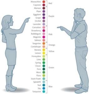 Diferenças entre como as pessoas enxergam as cores